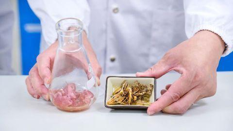 Turning Food Waste Into Useful Chitin