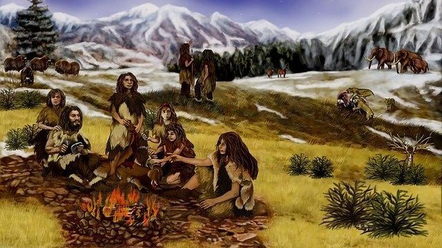 Neandertals Were Choosy When It Came To Making Tools