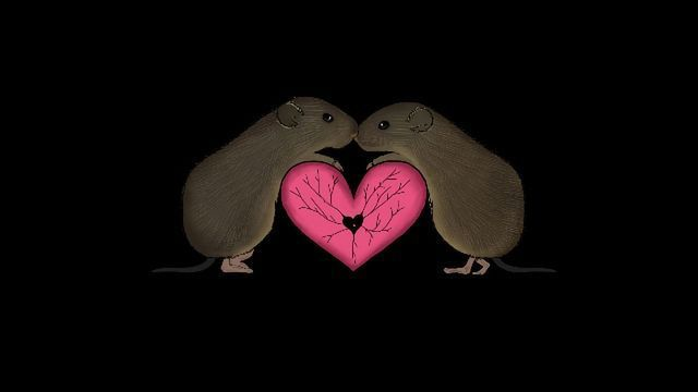 A Neural Basis for Longing: Absence Makes the Heart Grow Fonder and the Nucleus Accumbens Activate