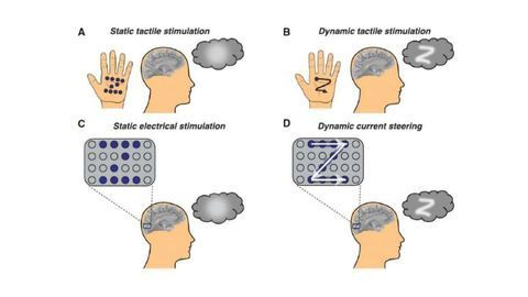 """Blind Adults Were Able To """"See"""" Letters Traced on Their Brain Using Electrical Stimulation"""