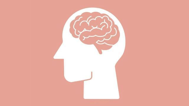 Researchers Identify the Seat of Executive Function in the Brain