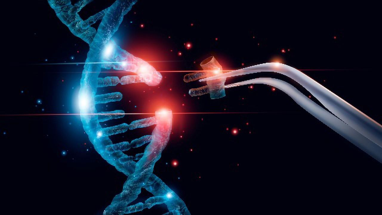 Improving Gene Editing by Promoting Error-free Repair of CRISPR/Cas9-cut DNA