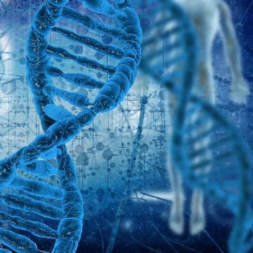 Olaparib Approved as First Gene-targeted Medicine for Prostate Cancer