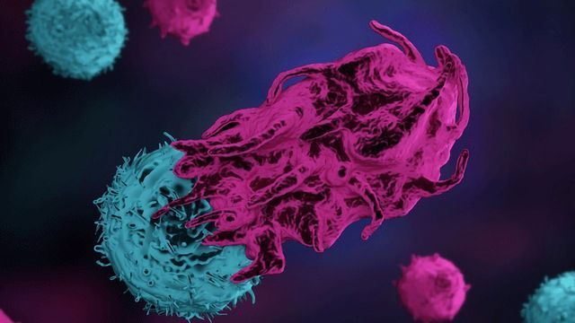 Two Biomarkers Help Predict Immunotherapy Response in Metastatic Breast Cancer