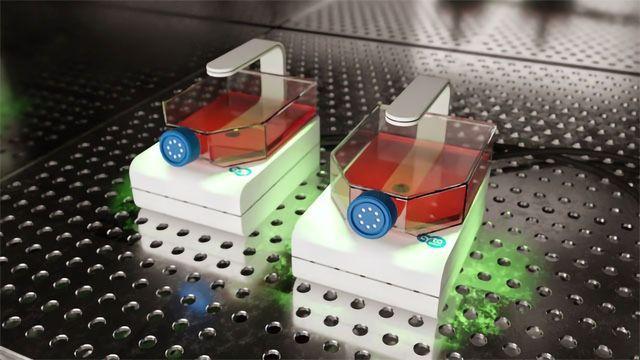 CytoSMART Technologies Announces Launch of CytoSMART Lux2 Duo Kit