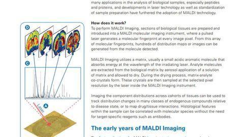 MALDI Imaging: Past, Present and Future
