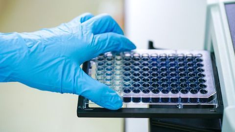 Specialized MAT Reagents for Accurate and Reliable In Vitro Pyrogen Testing