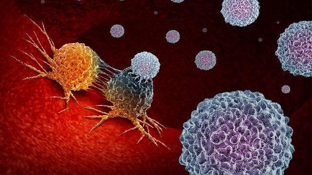 Key Developments in Cancer Immunotherapy Over the Last Decade