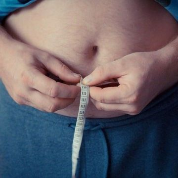Fat Cell's Immune Response Makes Obesity Even Worse