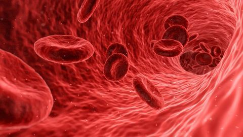 Synthetic Red Blood Cells Mimic Natural Ones and Have New Abilities