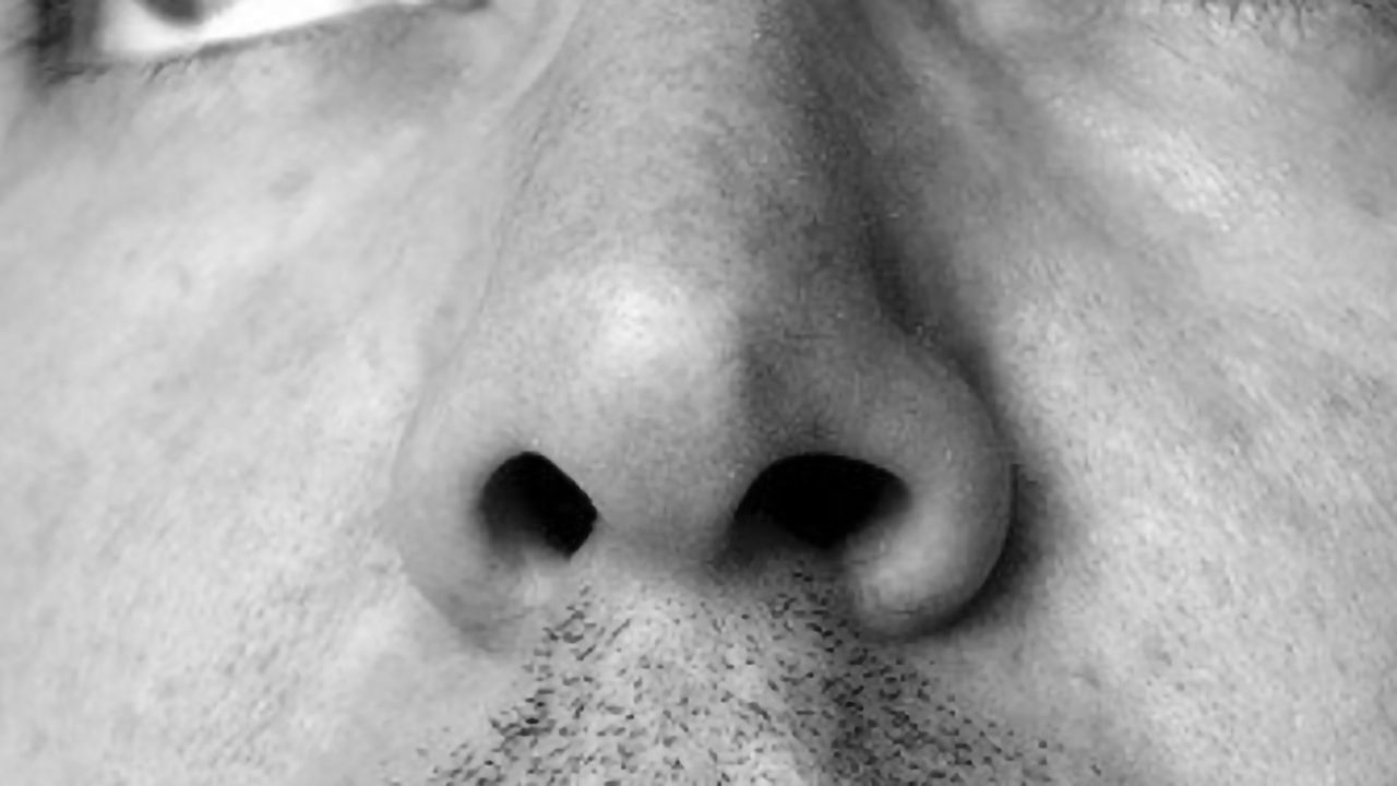 What Stops Viruses From Entering the Brain via the Nose?
