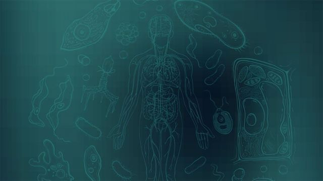 Million Microbiomes from Human Project