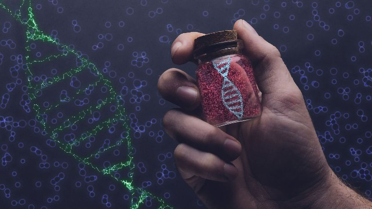 New DNA Replication Insights Can Be Applied To Develop Novel Cancer Therapies