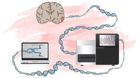 A New Way To Identify Genes That Drive Development of Brain Tumors