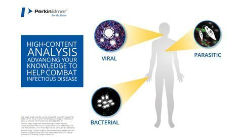 Advance Your Infectious Disease Research With High-content Analysis