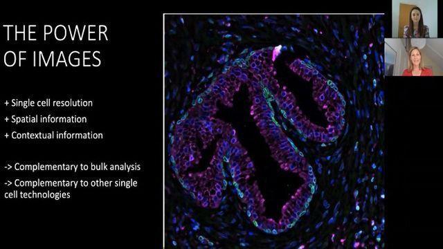 Teach Me in 10 – Antibody-based Imaging With Dr Charlotte Stadler