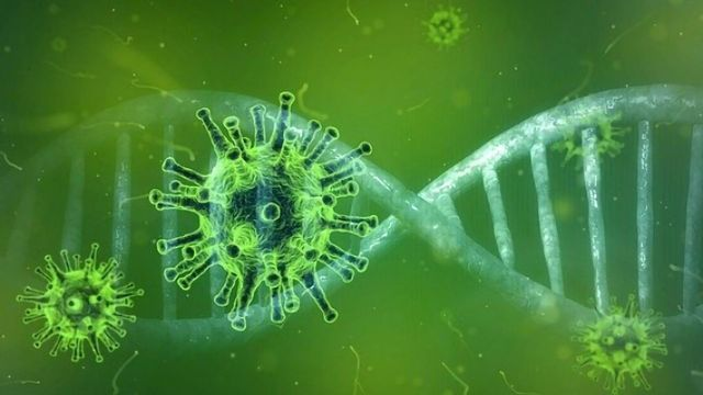 Mutation of Coronavirus Is Significantly Increasing Its ...