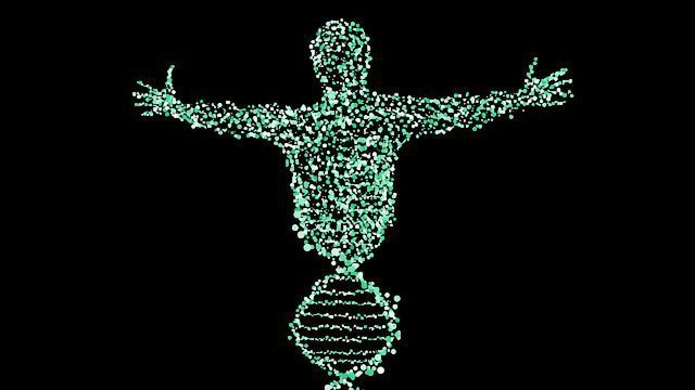 Could Ancient DNA Help Boost the Immune Functions of Modern Humans?