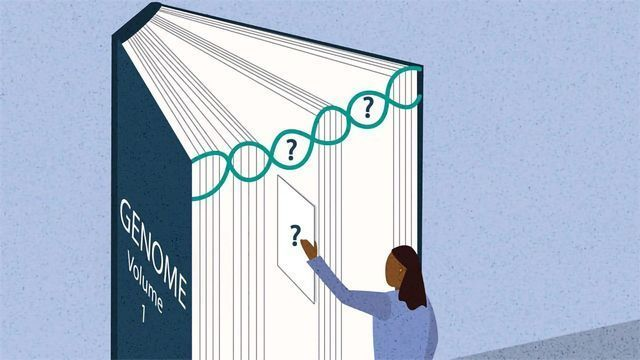Accurately Detecting Large Genetic Mutations Linked to Major Diseases