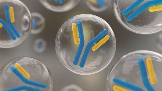 Overcoming Challenges in High-density Cell Culture Harvesting During Antibody Development