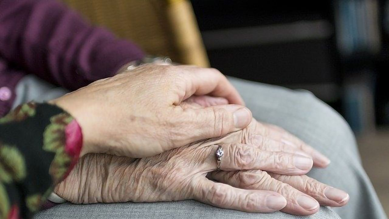 Genetic Mutations as a Tool To Predict Lifespan and Fertility