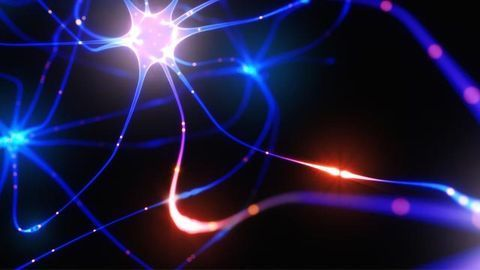 Three Potential New Therapeutics for Epilepsy Identified
