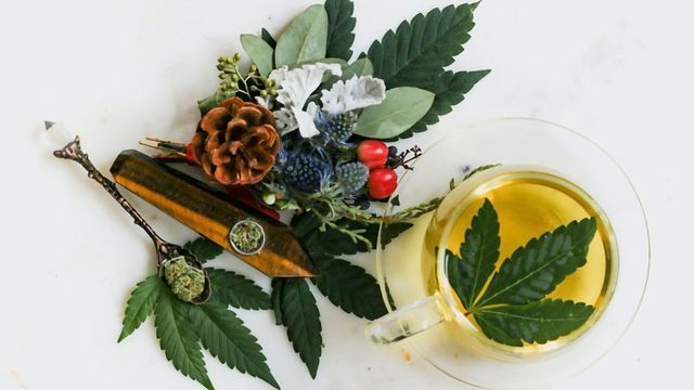 MS Patients Increasingly Turning to Alternative Medicine