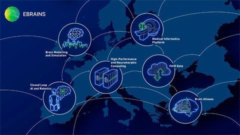 The Human Brain Project Has Entered Its Final Phase of Research