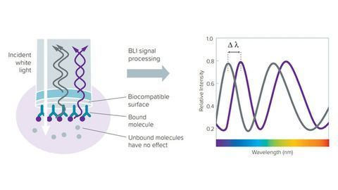 Enhance Efficiency and Economics Throughout Biotherapeutic Development