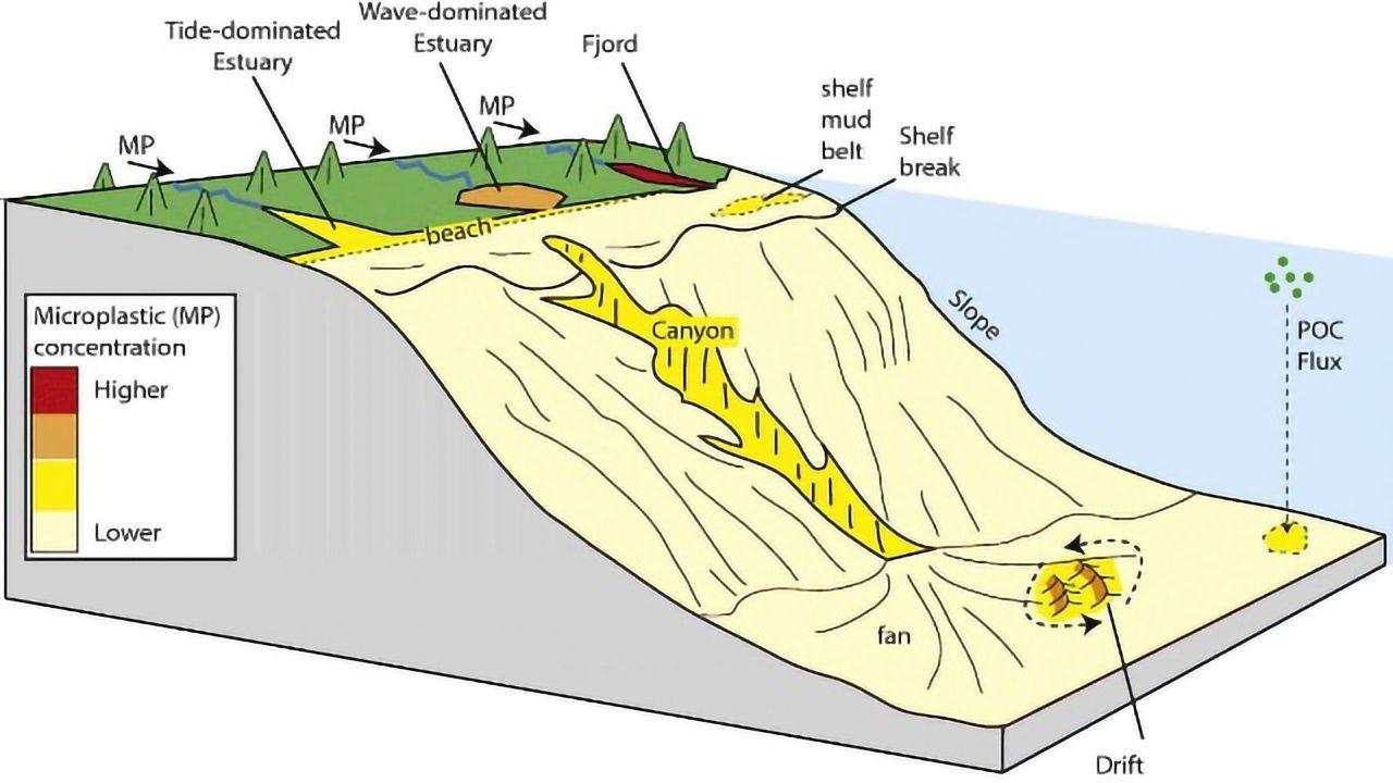 Microplastics Accumulate in Coastal Estuaries and Fjords