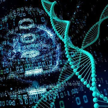 Expanding Our Understanding of How DNA Is Organized