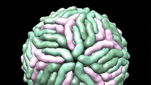 Cryo-EM Advances Are Good News for Drug Discovery