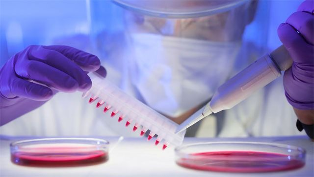 How To Ensure Cell Line Authenticity