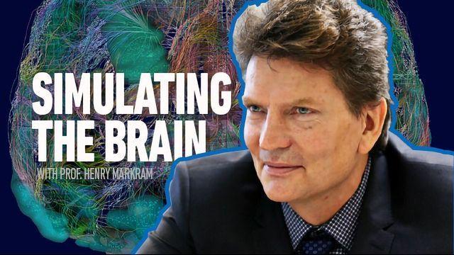Simulating the Brain: The Markram Interviews