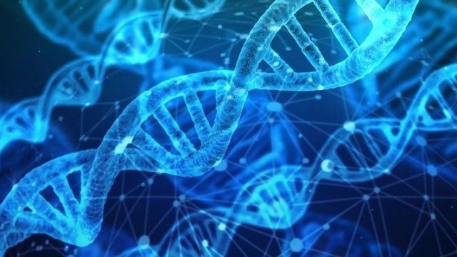 Cobra Biologics Delivers Final Plasmids for Production of CG01 in CombiGene's Epilepsy Project