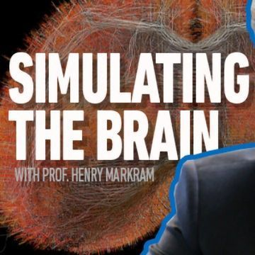 The Markram Interviews Part Two: Simulations and Experiments – How Can They Work Together?