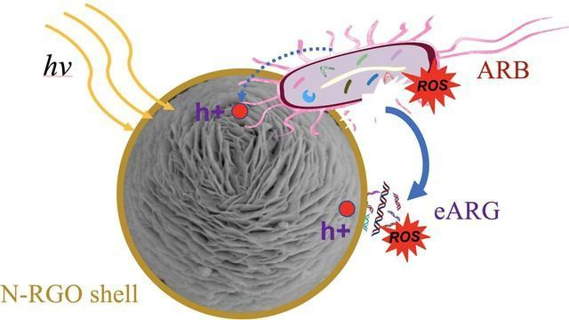 Wrap, Trap and Zap System Helps To Remove Antibiotic Resistant Bacteria From Wastewater