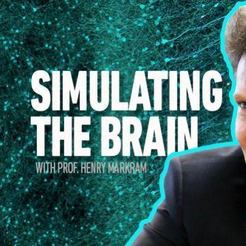 The Markram Interviews Part Three: The Blue Brain Project