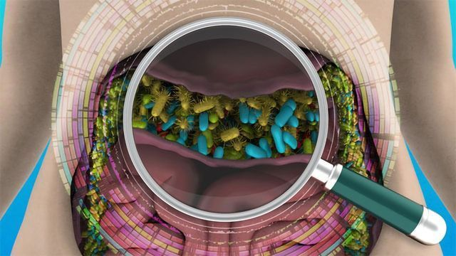 Unrivalled Inventory of the Human Gut Microbiome Created