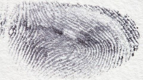 Forensic Science at Your Fingertips