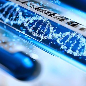 Deep Learning Algorithm Mines the Genome for Therapeutic Targets