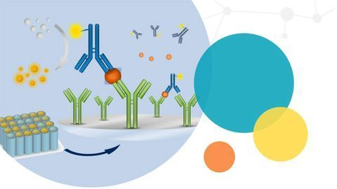Streamlined Absorbance Assays for Nucleic Acid and Protein Quantitation