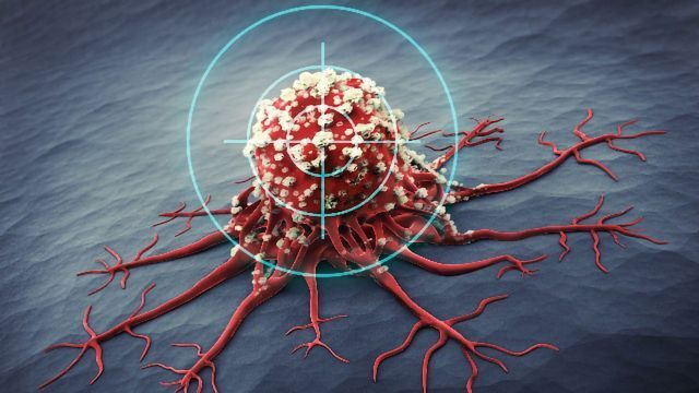 Byondis Initiates Phase I Study of Antibody-Drug Conjugate Cancer Therapy