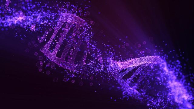 Lipid-Based Therapeutic Delivery System Resolves Genetic Disorder in Mouse Model