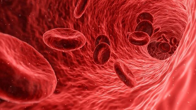 Convalescent Plasma Receives Emergency Authorization Use by FDA for COVID-19