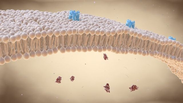 Molecular Computers Precisely Target the Right Cells