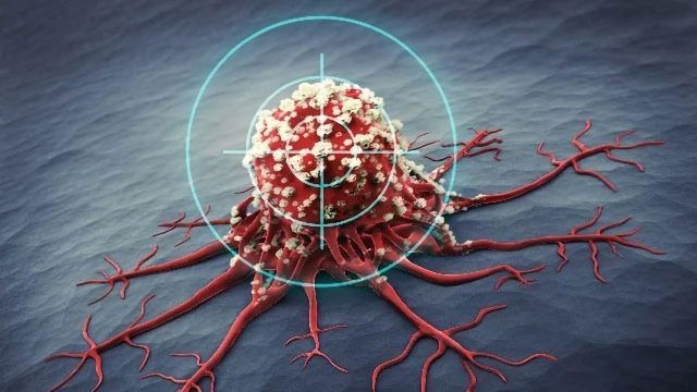 New Drug Target for the Control of Cancer Metastasis Identified Using Mouse Model
