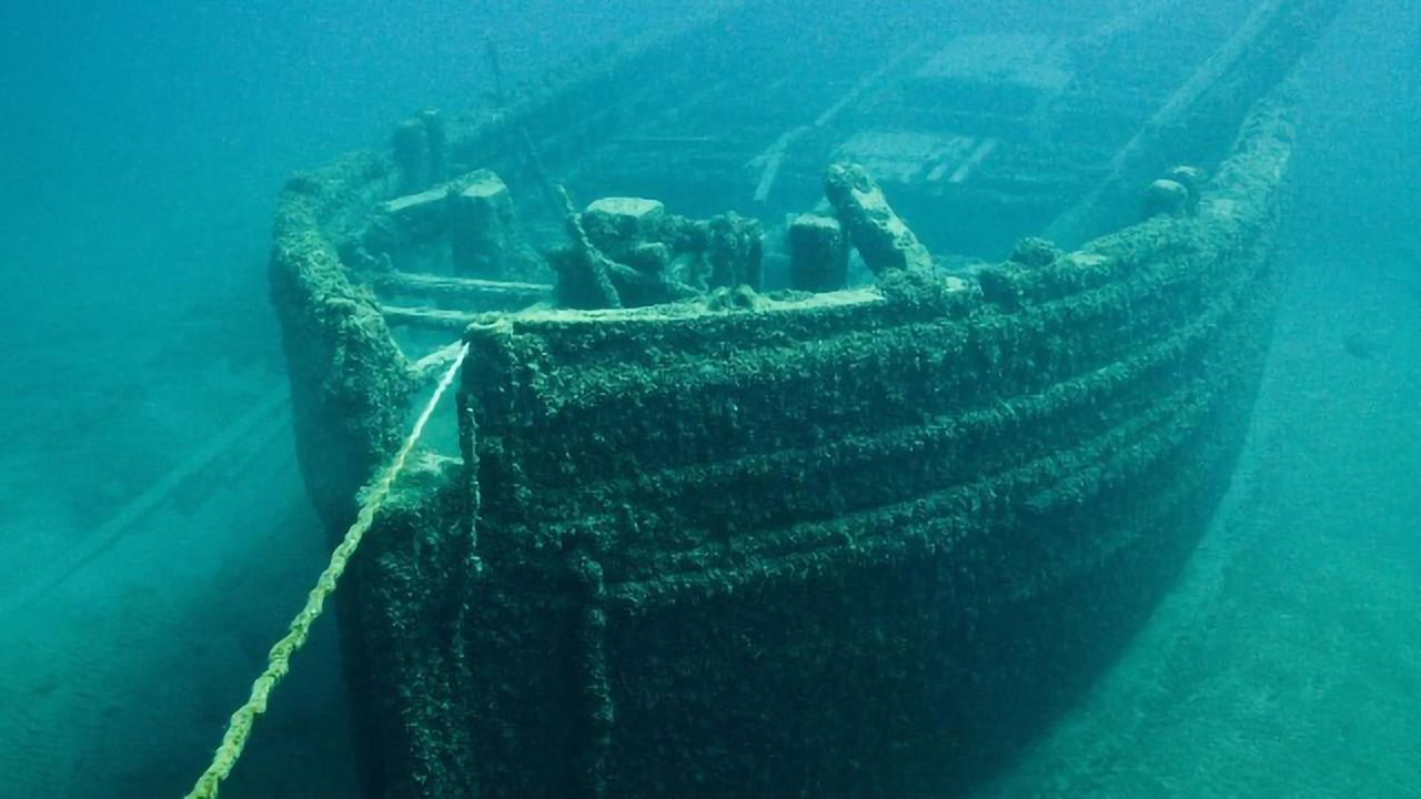 A Genetic Approach To Tackling Marine Biofouling