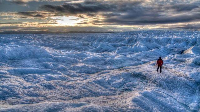 Viruses on Glaciers Challenge Assumptions About Evolution
