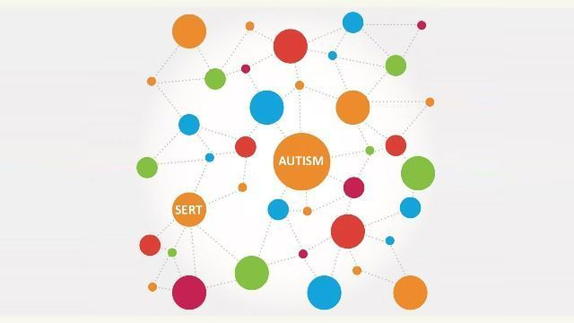 Unraveling the Puzzle of Serotonin Changes in Autism